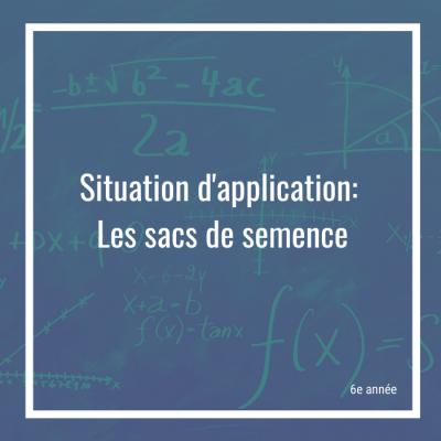 Situation d'application: Les sacs de semence - 6e année | Math à distance